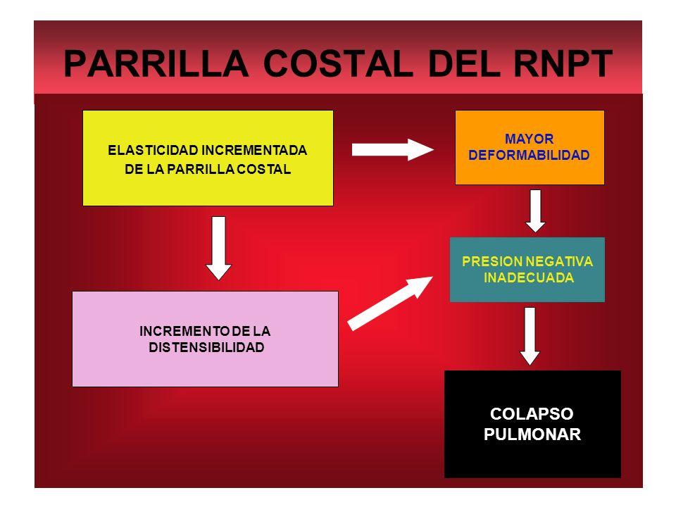 PARRILLA COSTAL DEL RNPT ELASTICIDAD INCREMENTADA DE LA PARRILLA COSTAL INCREMENTO DE LA DISTENSIBILIDAD PRESION NEGATIVA INADECUADA MAYOR DEFORMABILI