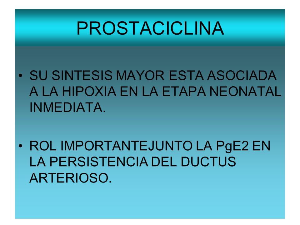 PROSTACICLINA SU SINTESIS MAYOR ESTA ASOCIADA A LA HIPOXIA EN LA ETAPA NEONATAL INMEDIATA. ROL IMPORTANTEJUNTO LA PgE2 EN LA PERSISTENCIA DEL DUCTUS A