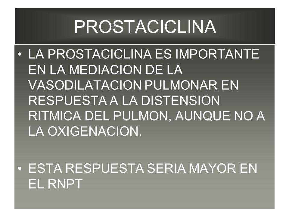 PROSTACICLINA LA PROSTACICLINA ES IMPORTANTE EN LA MEDIACION DE LA VASODILATACION PULMONAR EN RESPUESTA A LA DISTENSION RITMICA DEL PULMON, AUNQUE NO