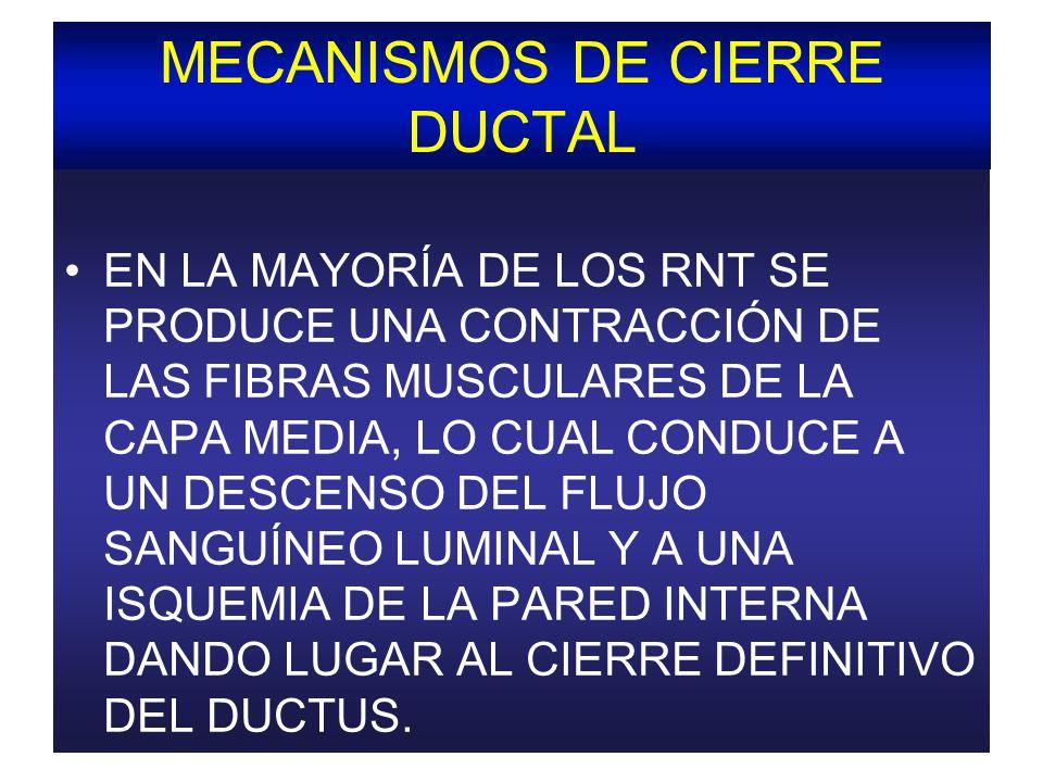 MECANISMOS DE CIERRE DUCTAL EN LA MAYORÍA DE LOS RNT SE PRODUCE UNA CONTRACCIÓN DE LAS FIBRAS MUSCULARES DE LA CAPA MEDIA, LO CUAL CONDUCE A UN DESCEN