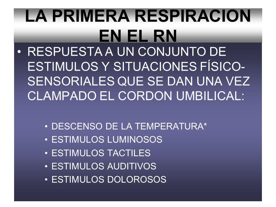 LA PRIMERA RESPIRACION EN EL RN FACTORES QUIMICOS QUE INICIAN LA RESPIRACION DEL RN: –AUMENTO DE Paco2 –DISMINUCION DE LA Pao2* –DISMINUCION DEL Ph*
