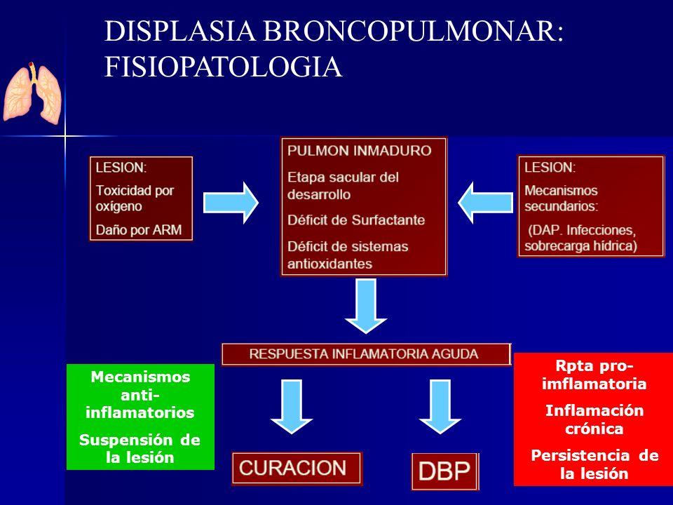 Mecanismos anti- inflamatorios Suspensión de la lesión Rpta pro- imflamatoria Inflamación crónica Persistencia de la lesión DISPLASIA BRONCOPULMONAR: