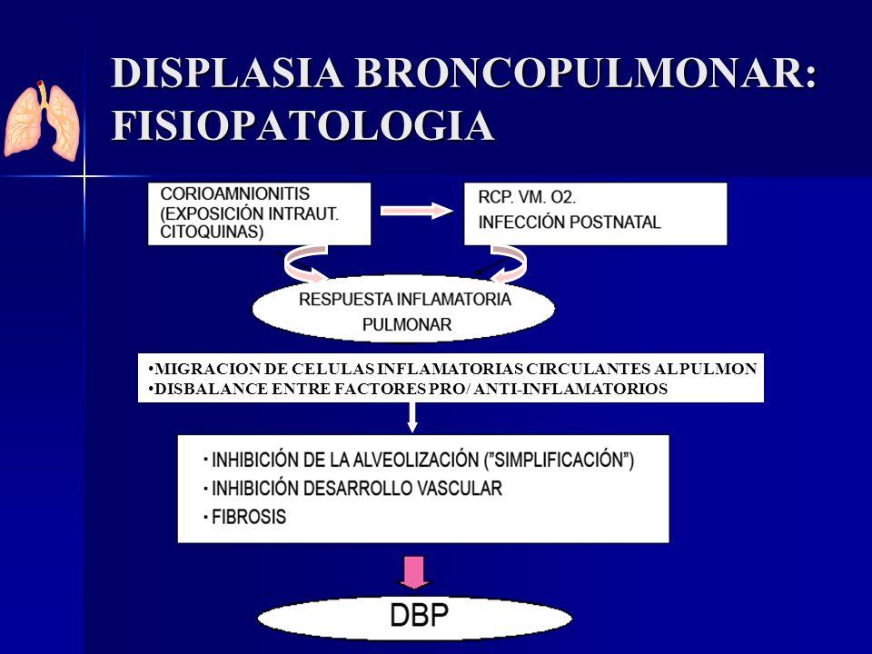 DISPLASIA BRONCOPULMONAR: FISIOPATOLOGIA MIGRACION DE CELULAS INFLAMATORIAS CIRCULANTES AL PULMON DISBALANCE ENTRE FACTORES PRO/ ANTI-INFLAMATORIOS