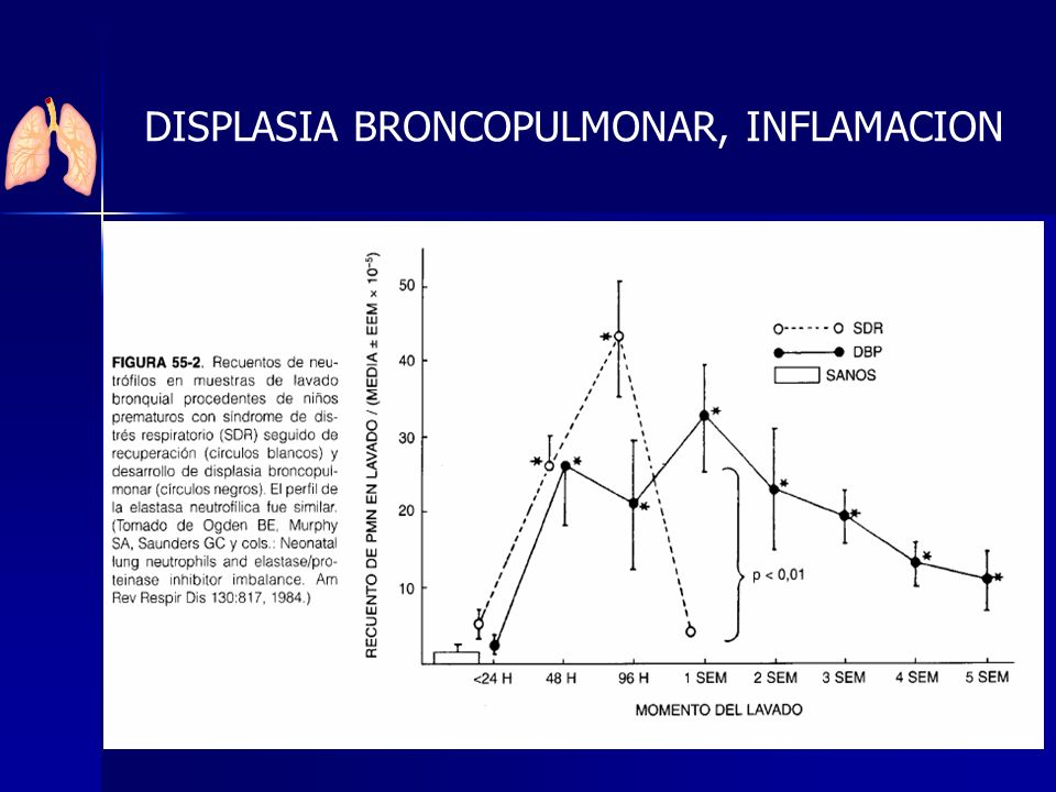 DISPLASIA BRONCOPULMONAR, INFLAMACION
