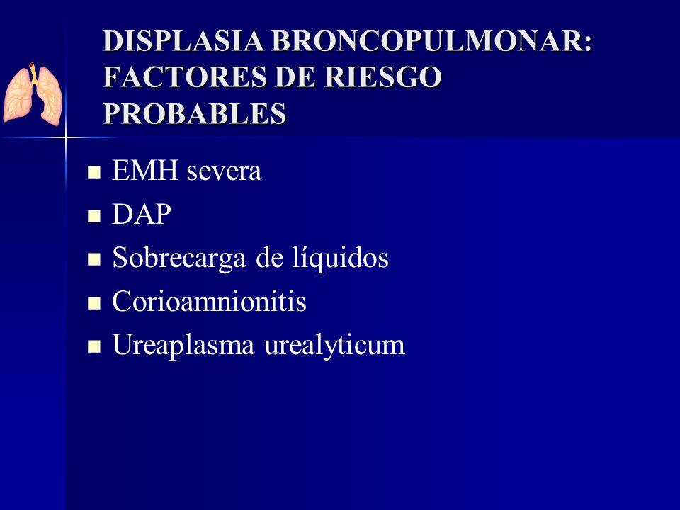 EMH severa DAP Sobrecarga de líquidos Corioamnionitis Ureaplasma urealyticum DISPLASIA BRONCOPULMONAR: FACTORES DE RIESGO PROBABLES