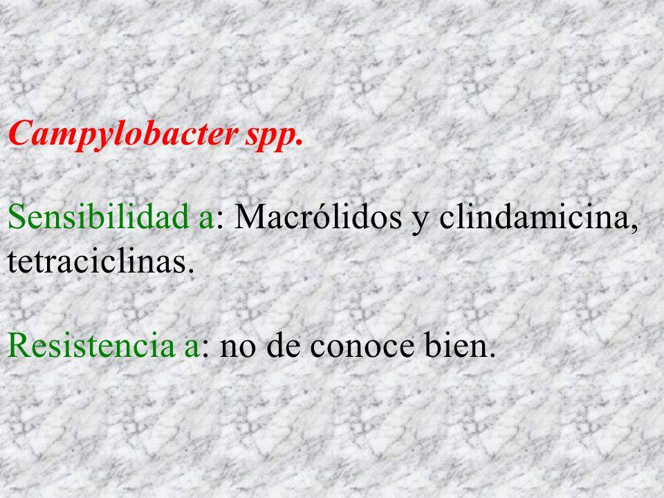 Campylobacter spp. Sensibilidad a: Macrólidos y clindamicina, tetraciclinas. Resistencia a: no de conoce bien.