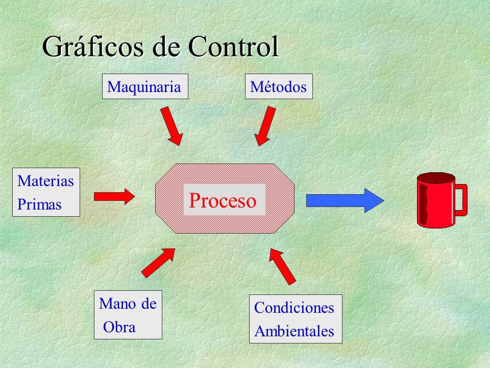 Proceso Materias Primas Maquinaria Mano de Obra Métodos Condiciones Ambientales
