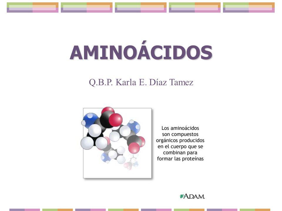 AMINOÁCIDOS (aa) Unidades que forman las proteínas.