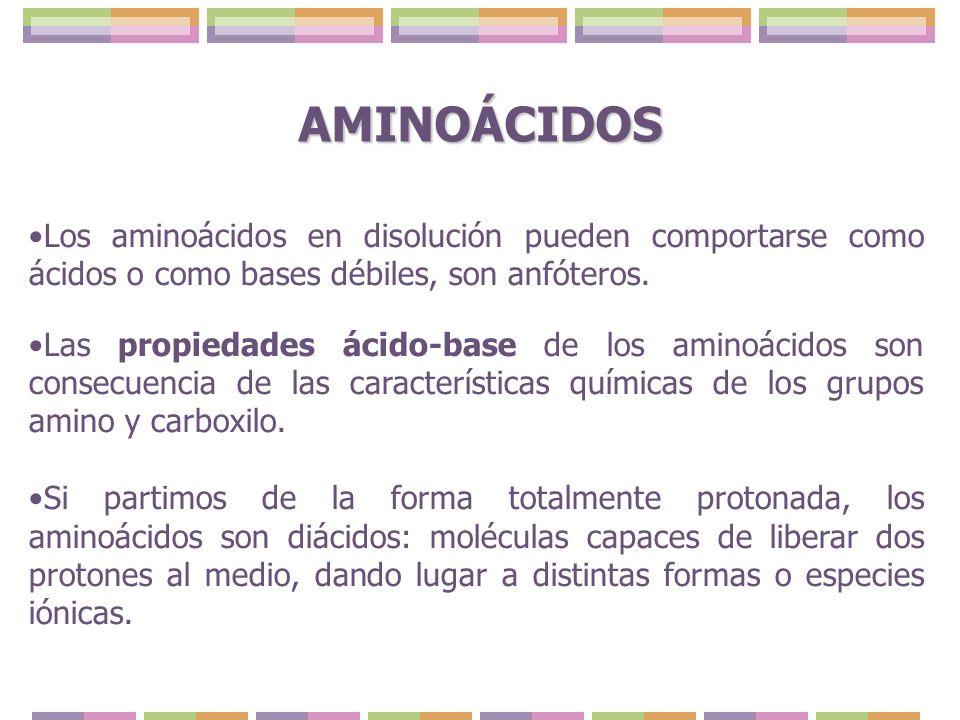 Los aminoácidos en disolución pueden comportarse como ácidos o como bases débiles, son anfóteros. Las propiedades ácido-base de los aminoácidos son co