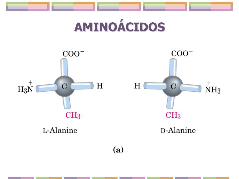 Cromatografía de intercambio iónico Se realiza sobre matrices que tienen una carga neta.