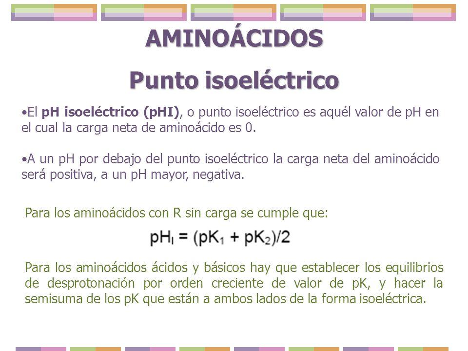El pH isoeléctrico (pHI), o punto isoeléctrico es aquél valor de pH en el cual la carga neta de aminoácido es 0. A un pH por debajo del punto isoeléct