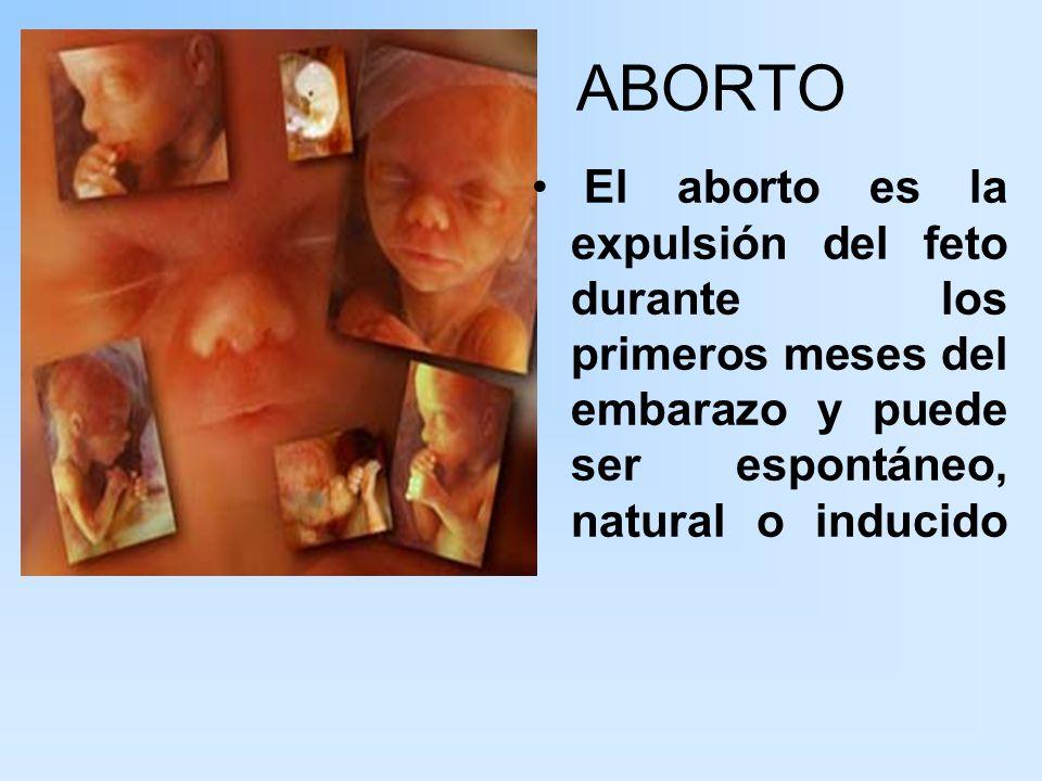 El aborto espontáneo Sucede antes de los 3 meses de embarazo y generalmente se debe a anomalías congénitas del producto, falta de inmadurez sexual o a problemas en la placenta.