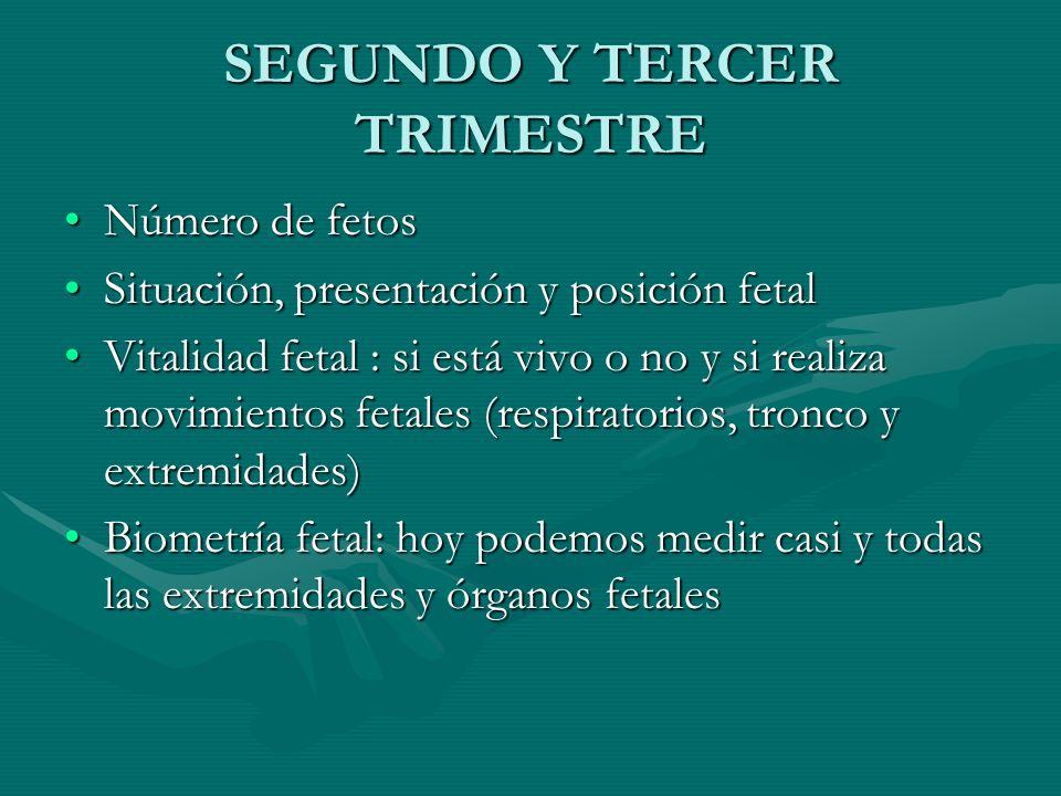 SEGUNDO Y TERCER TRIMESTRE Número de fetosNúmero de fetos Situación, presentación y posición fetalSituación, presentación y posición fetal Vitalidad f