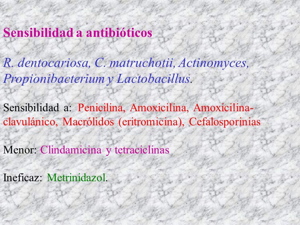 Sensibilidad a antibióticos R. dentocariosa, C. matruchotii, Actinomyces, Propionibacterium y Lactobacillus. Sensibilidad a: Penicilina, Amoxicilina,