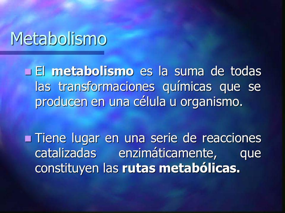 Metabolismo El metabolismo es la suma de todas las transformaciones químicas que se producen en una célula u organismo. El metabolismo es la suma de t