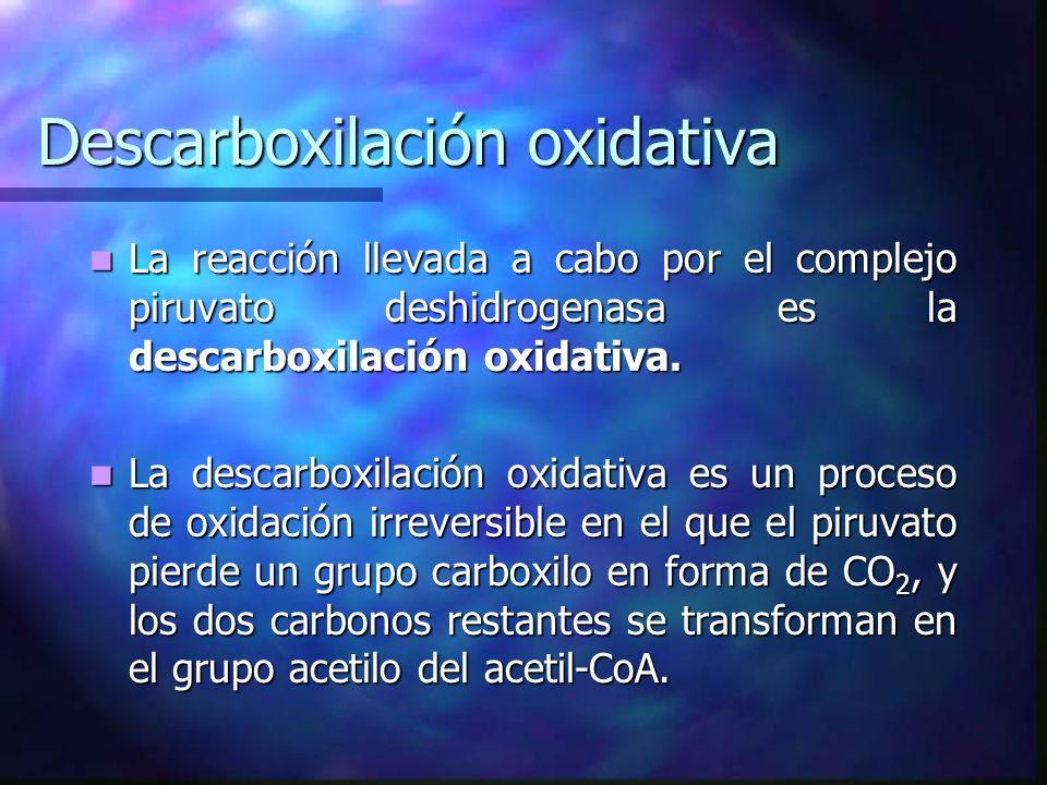 Descarboxilación oxidativa La reacción llevada a cabo por el complejo piruvato deshidrogenasa es la descarboxilación oxidativa. La reacción llevada a
