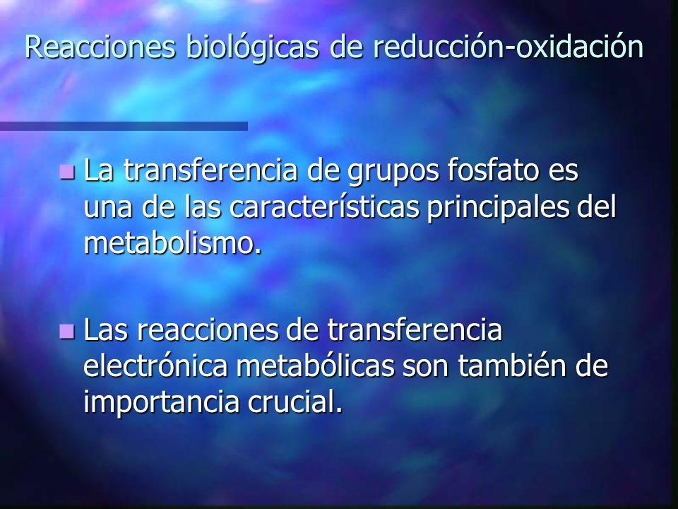 Reacciones biológicas de reducción-oxidación La transferencia de grupos fosfato es una de las características principales del metabolismo. La transfer