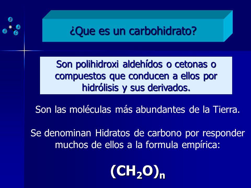 ¿Que es un carbohidrato? Son polihidroxi aldehídos o cetonas o compuestos que conducen a ellos por hidrólisis y sus derivados. Son las moléculas más a