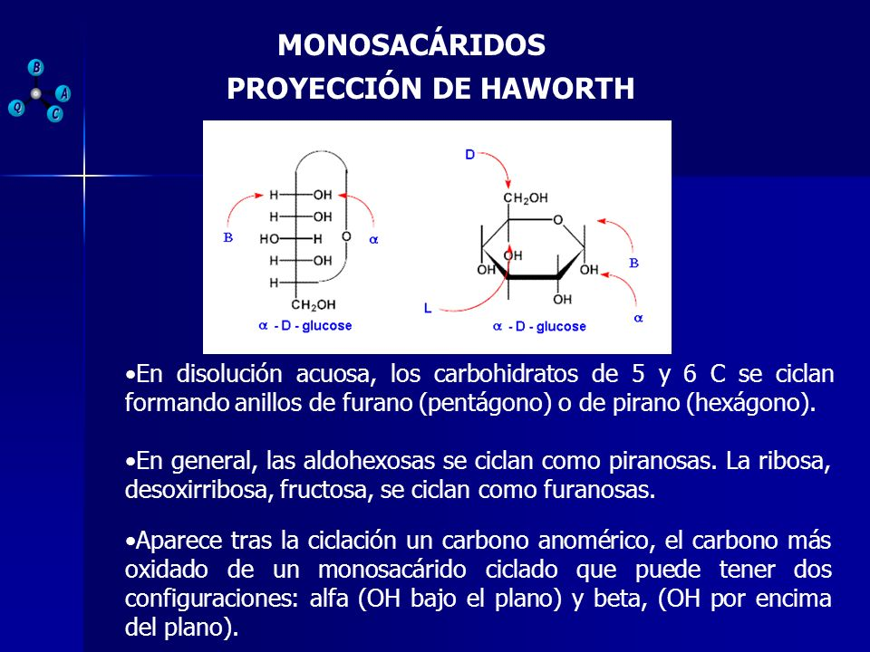 PROYECCIÓN DE HAWORTH En disolución acuosa, los carbohidratos de 5 y 6 C se ciclan formando anillos de furano (pentágono) o de pirano (hexágono). En g