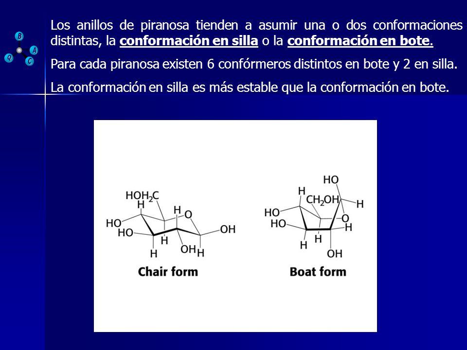 Los anillos de piranosa tienden a asumir una o dos conformaciones distintas, la conformación en silla o la conformación en bote. Para cada piranosa ex