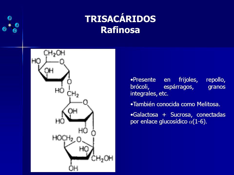 TRISACÁRIDOS Rafinosa Presente en frijoles, repollo, brócoli, espárragos, granos integrales, etc. También conocida como Melitosa. Galactosa + Sucrosa,