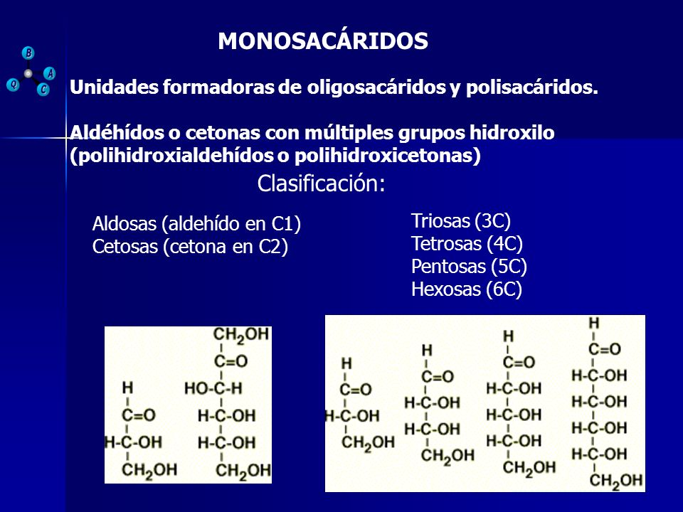 PROYECCIÓN DE HAWORTH En disolución acuosa, los carbohidratos de 5 y 6 C se ciclan formando anillos de furano (pentágono) o de pirano (hexágono).