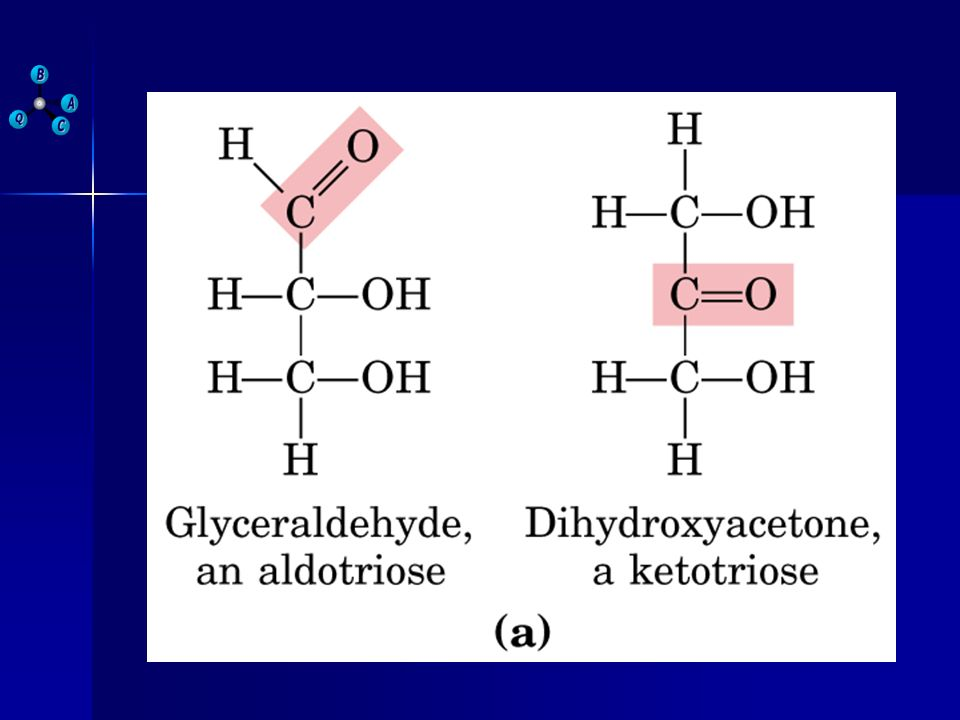 MONOSACÁRIDOS FUNCIONES BIOLÓGICAS Triosas: GA y DHA, son intermediarios metabólicos que se acumulan dentro de la célula.