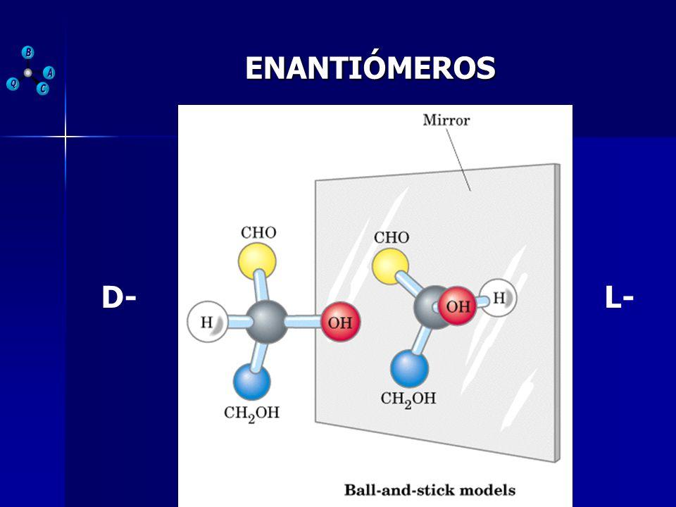 DISACÁRIDOS ENLACE GLUCOSÍDICO Reaccionan dos grupos OH de dos monosacáridos diferentes y se elimina una molécula de agua.
