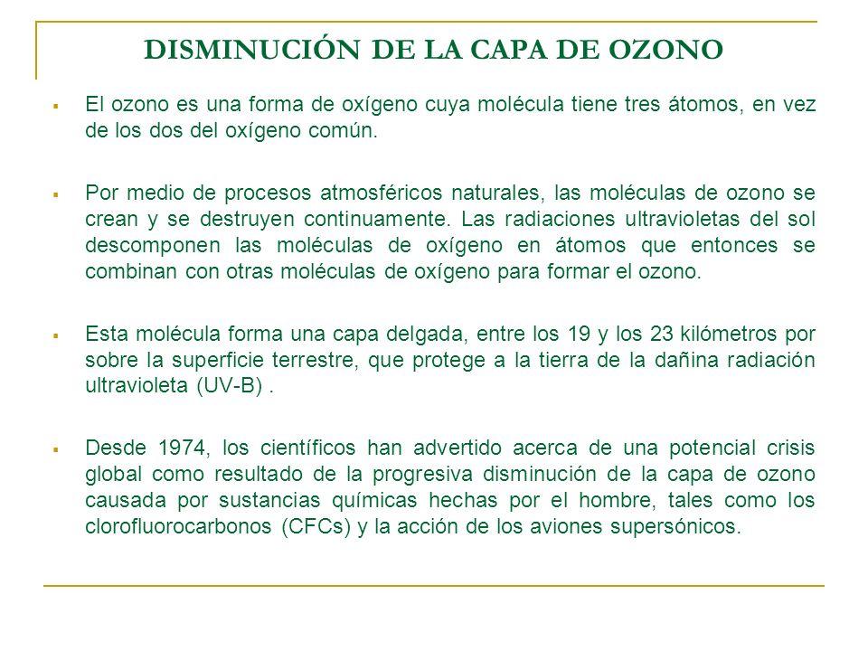 DISMINUCION DE LA CAPA DE OZONO El proceso es altamente dañino, ya que en promedio un átomo de cloro es capaz de destruir hasta 100.000 moléculas de ozono.