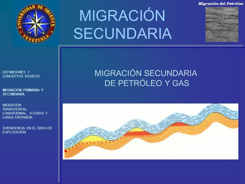 MIGRACIÓN SECUNDARIA DEFINICIONES Y CONCEPTOS BASICOS MIGRACIÓN PRIMARIA Y SECUNDARIA. MIGRACIÓN TRANSVERSAL, LONGITUDINAL, A CORTA Y LARGA DISTANCIA