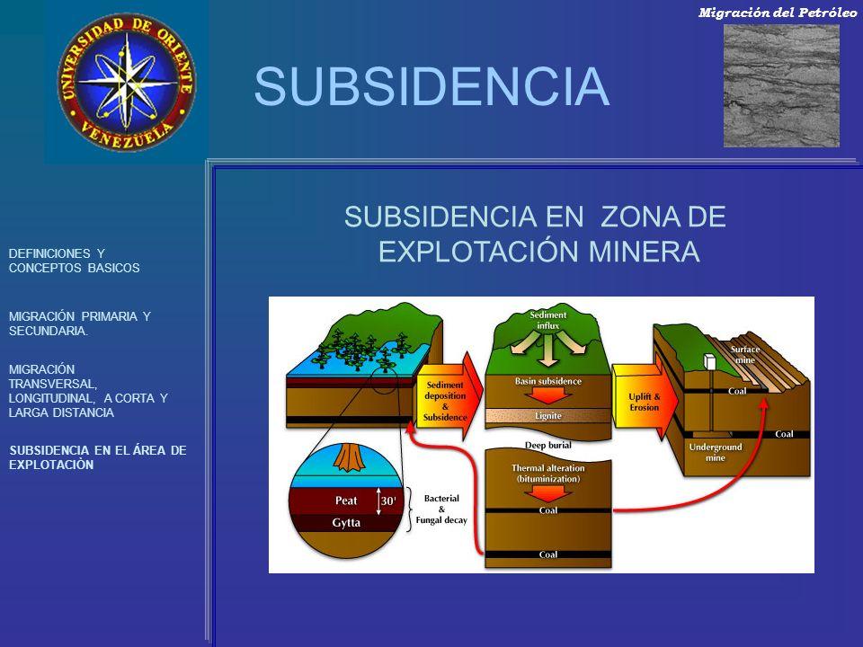 SUBSIDENCIA DEFINICIONES Y CONCEPTOS BASICOS MIGRACIÓN PRIMARIA Y SECUNDARIA. MIGRACIÓN TRANSVERSAL, LONGITUDINAL, A CORTA Y LARGA DISTANCIA SUBSIDENC