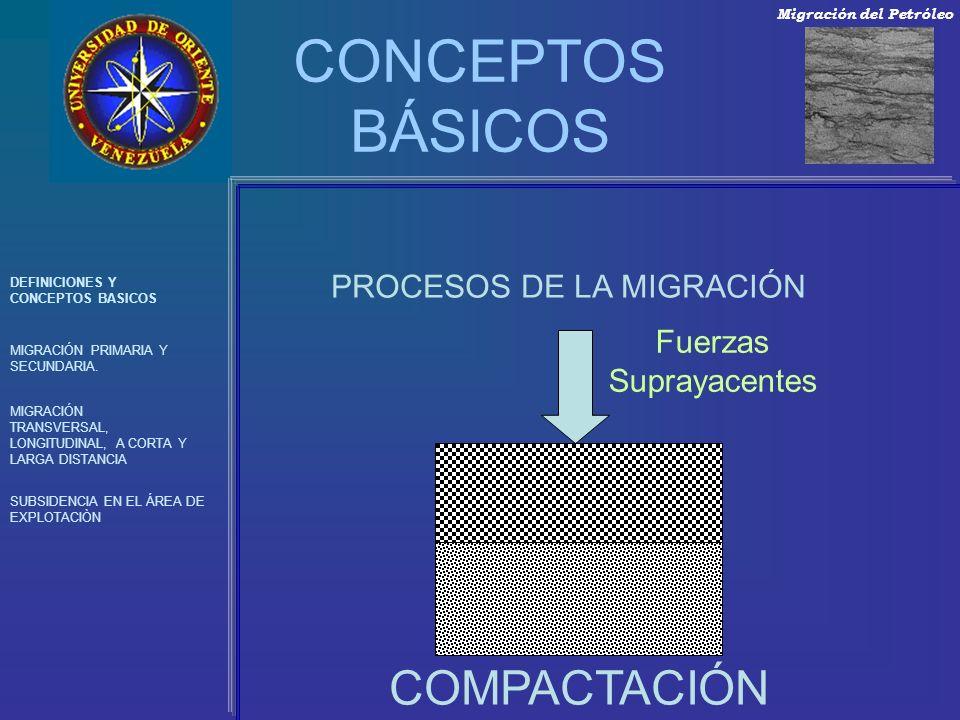 CONCEPTOS BÁSICOS DEFINICIONES Y CONCEPTOS BASICOS MIGRACIÓN PRIMARIA Y SECUNDARIA. MIGRACIÓN TRANSVERSAL, LONGITUDINAL, A CORTA Y LARGA DISTANCIA SUB