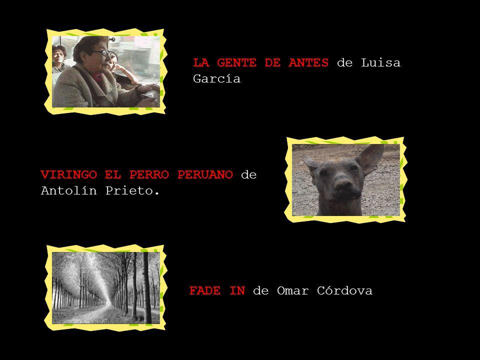 CORTOMETRAJES PERUANOS CHIKI YUUGI de Carlos Benvenuto y Pedro Montes. EL TORITO de Antolín Prieto. AVENIDA DE LA ESTAFA de Rodolfo Raúl Benites.