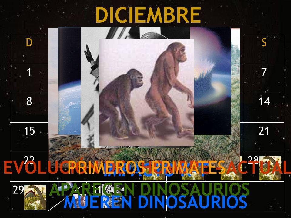 31 30 29 28272625242322 21201918171615 141312111098 7654321 SVJMMLD DICIEMBRE APARECEN DINOSAURIOS IMPACTO K-T MUEREN DINOSAURIOS EVOLUCIÓN DEL HOMBRE