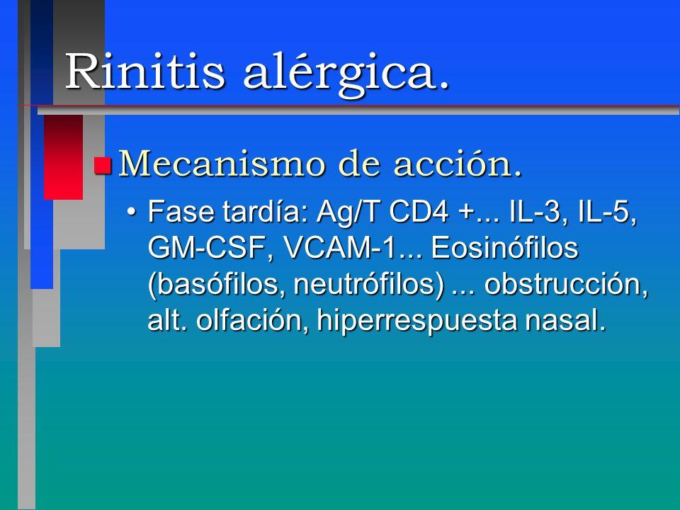 Rinitis alérgica. n Mecanismo de acción. Fase tardía: Ag/T CD4 +... IL-3, IL-5, GM-CSF, VCAM-1... Eosinófilos (basófilos, neutrófilos)... obstrucción,