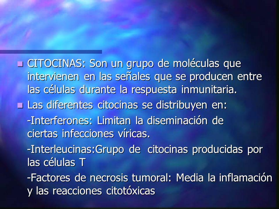 CITOCINAS: Son un grupo de moléculas que intervienen en las señales que se producen entre las células durante la respuesta inmunitaria. CITOCINAS: Son