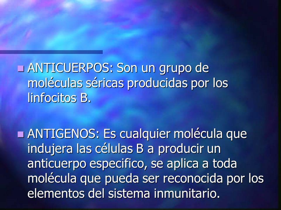 ANTICUERPOS: Son un grupo de moléculas séricas producidas por los linfocitos B. ANTICUERPOS: Son un grupo de moléculas séricas producidas por los linf