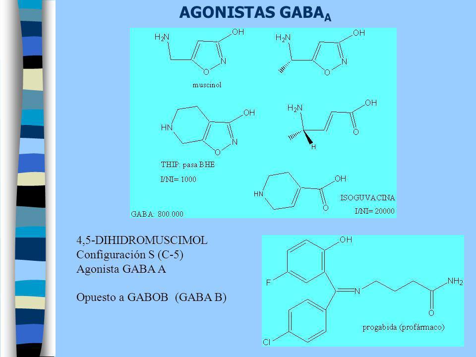 AGONISTAS GABA A 4,5-DIHIDROMUSCIMOL Configuración S (C-5) Agonista GABA A Opuesto a GABOB (GABA B)