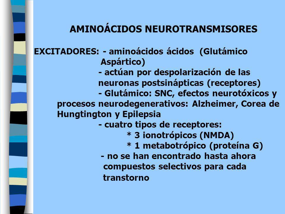 AMINOÁCIDOS NEUROTRANSMISORES EXCITADORES: - aminoácidos ácidos (Glutámico Aspártico) - actúan por despolarización de las neuronas postsinápticas (rec