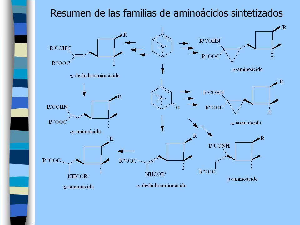 Resumen de las familias de aminoácidos sintetizados