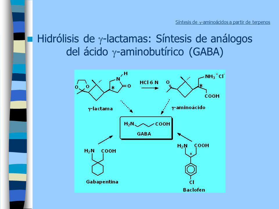 Síntesis de -aminoácidos a partir de terpenos Hidrólisis de -lactamas: Síntesis de análogos del ácido -aminobutírico (GABA)