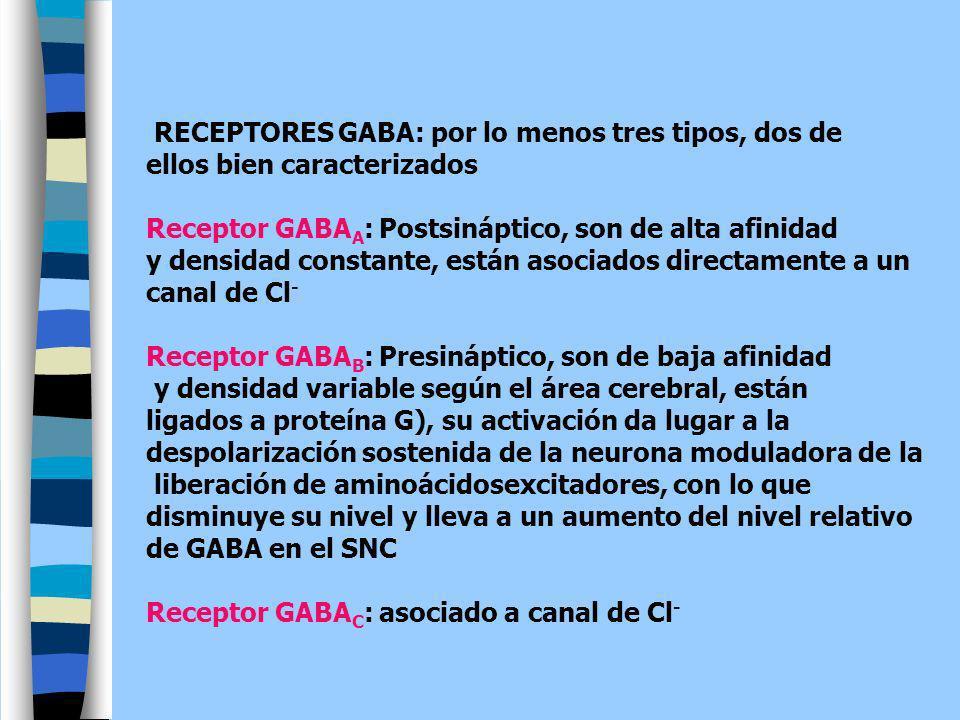 RECEPTORES GABA: por lo menos tres tipos, dos de ellos bien caracterizados Receptor GABA A : Postsináptico, son de alta afinidad y densidad constante,