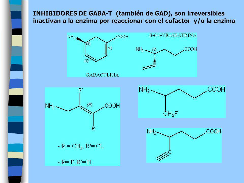 INHIBIDORES DE GABA-T (también de GAD), son irreversibles inactivan a la enzima por reaccionar con el cofactor y/o la enzima