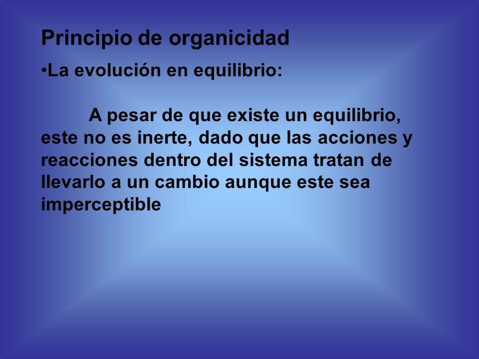Principio de organicidad La evolución en equilibrio: A pesar de que existe un equilibrio, este no es inerte, dado que las acciones y reacciones dentro