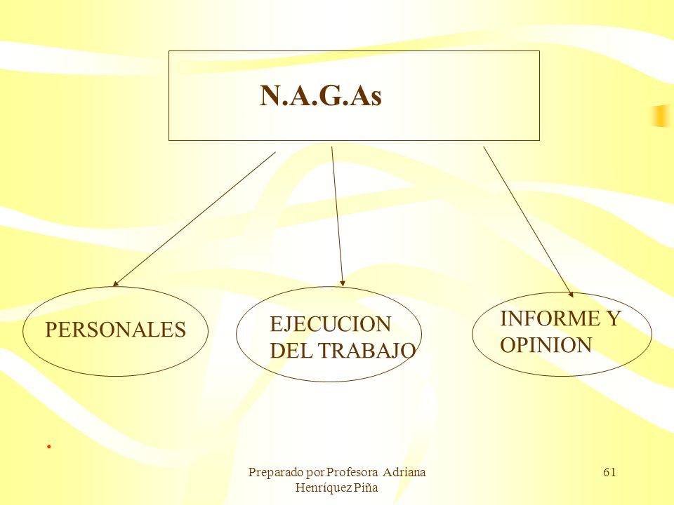 Preparado por Profesora Adriana Henríquez Piña 61. N.A.G.As PERSONALES EJECUCION DEL TRABAJO INFORME Y OPINION