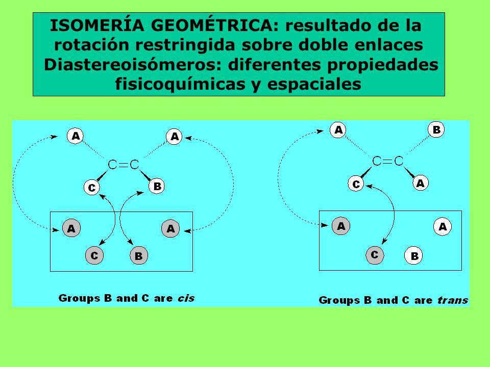 ISOMERÍA GEOMÉTRICA: resultado de la rotación restringida sobre doble enlaces Diastereoisómeros: diferentes propiedades fisicoquímicas y espaciales