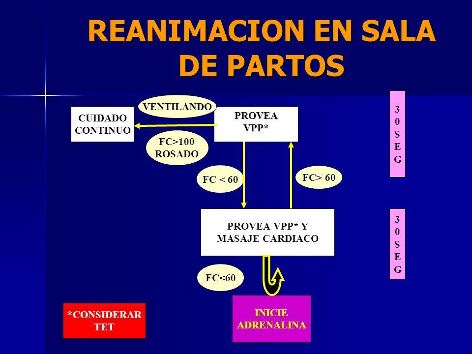 REANIMACION EN SALA DE PARTOS PARTO LIBRE DE MECONIO RESPIRA O LLORA BUEN TONO MUSCULAR COLOR ROSADO GESTACION A TERMINO PROVEA CALOR POSICIONE, SUCCI