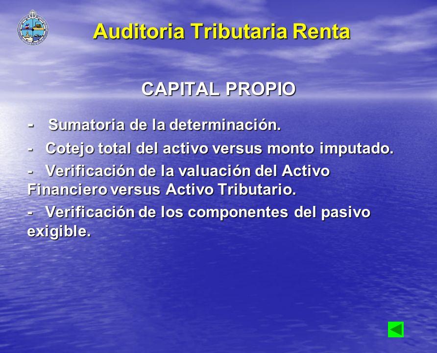 CAPITAL PROPIO - Sumatoria de la determinación. - Cotejo total del activo versus monto imputado. - Verificación de la valuación del Activo Financiero