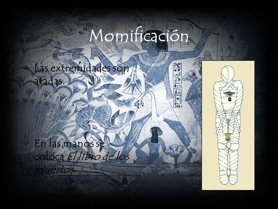 Momificación Las extremidades son atadas. En las manos se coloca El libro de los muertos.