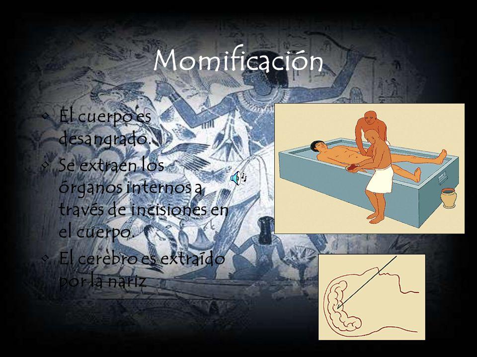 Momificación El cuerpo es desangrado. Se extraen los órganos internos a través de incisiones en el cuerpo. El cerebro es extraído por la nariz